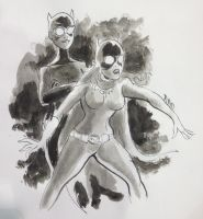 batgirl and catwoman by BoldFacedComics