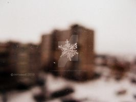 lonely snowflake by summerly-sunshine