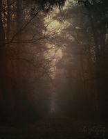 Haunted Autumn by EclipxPhotography