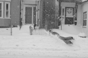 2015 January Blizzard, Snow Football Play and Dive by Miss-Tbones