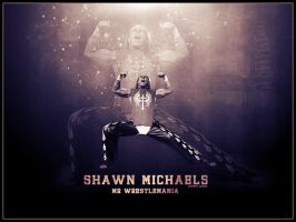 Shawn Michaels Wallpaper by Cre5po