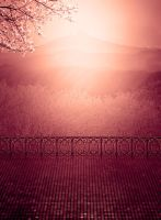 background stock204 by Sophie-Y