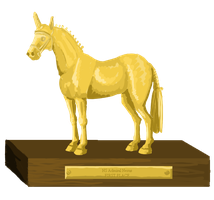 Sport Horse Inspection Trophy - First place by femalefred