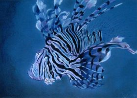 Lionfish by Ileina