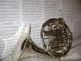 French horn by zanabri