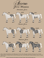 Zebra Gene Sheet by micro-pup