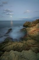 howl to the moon by BelcyrPiotr