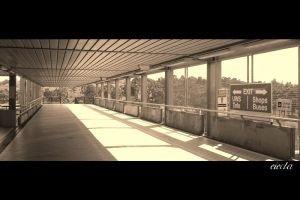 Macarthur Railway Statn Sepia by dsx001