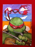 Raphael by SoVeryUnofficial