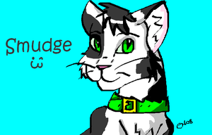 Smudgykins by Moonflight-RiverClan