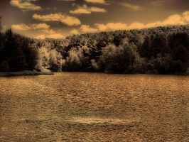 waterscape _ dark _ brown by Aimelle-Stock