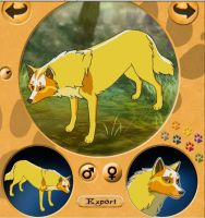 Charlie on wolf maker by Blackwolf008