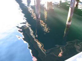 Seattle Waters by stereo-typed