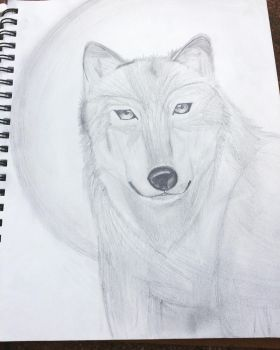 Wolf  by Cry13