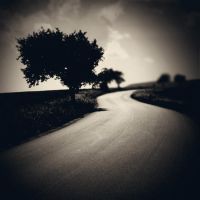 CCXVI. ..road by behherit