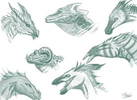 Dragon Head Sketches by Caerulai