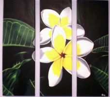 frangipani by im-such-a-freak