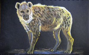 Laughing Hyena by HouseofChabrier