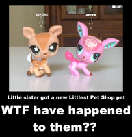 .:IDK anymore:. Littlest Pet Shop pets these days by SilverfanNumberONE