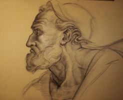Study after Michelangelo by Demiourgos12