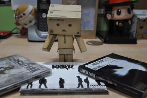 Danbo Loves Linkin Park by diaoboyxd
