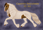 Cavitto Discovery 101 by Cloudrunner64