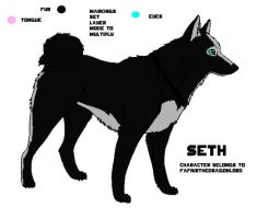 Seth reference sheet by FafnirtheDragonLord