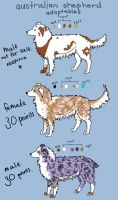 Australian Shepherd Adoptables by bearsleep