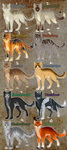 Warrior Adoptables #1 - OPEN by TheMoonfall