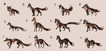 So Many Foxes by SageOfMagic