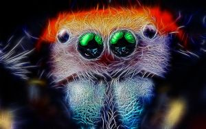 Spiders Eyes Fractalius by KarmeticPeace
