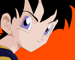 Dragonball Z Videl by PM50246