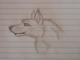 A Sketch by LaDeary