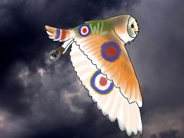Spitfire Barn Owl by ProjectOWL