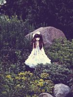 Secret Garden by shaiel