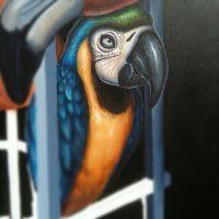 parrot preview by JordanMendenhall