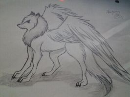 Winged wolf by annameg1002