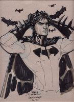 Batman Supanova 2013 by TerryDodson