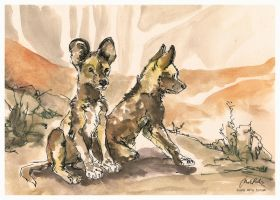 African Wild Dog Pups by ISHAWEE