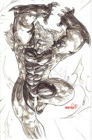 Sabretooth (pencils) by emmshin
