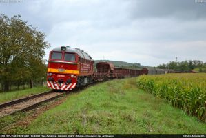 CSD T679-1168+T679-1600 Pn62922 Novosedly 27-09-14 by Comboio-Bolt