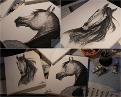 Painting Horses by haymi