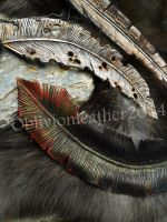 Leather Feathers by Oblivionleather76