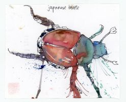 one a day / japanese beetle by reminisense