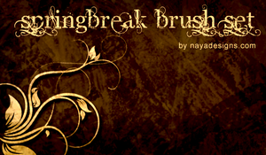 springBreak floral brush set by NayaDesigns