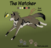 The Watcher Contest entry by xAshleyMx