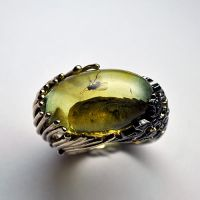 Amber ring 3 by GatoJewel-DerKater