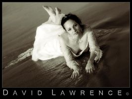 Bride on the Beach by DavidLawrence