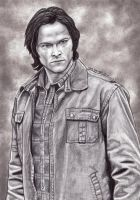 Sam Swan Song by lupinemagic