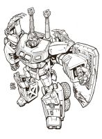 classics onslaught 2.0 by cromagnus
